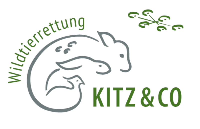 Kitz & Co. – Wildtierrettung
